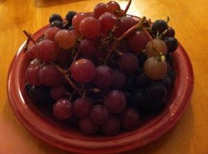 Concord Grapes!